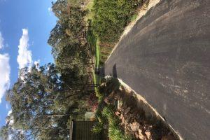 Driveway 7